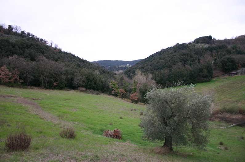 SUFI SILENT RETREAT: Amelia (ITALY)